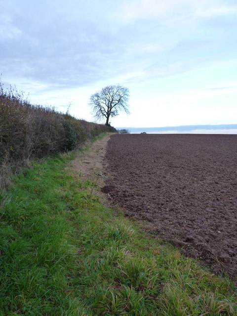Fieldside footpath across Aston Hill