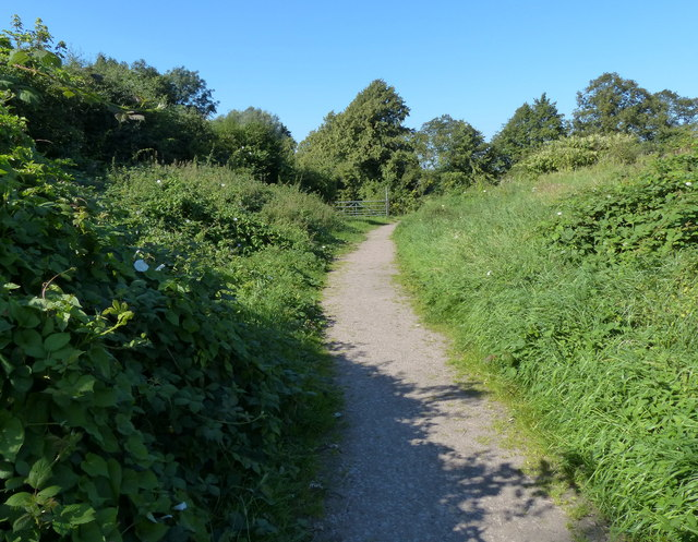 Path across the Aylestone Meadows