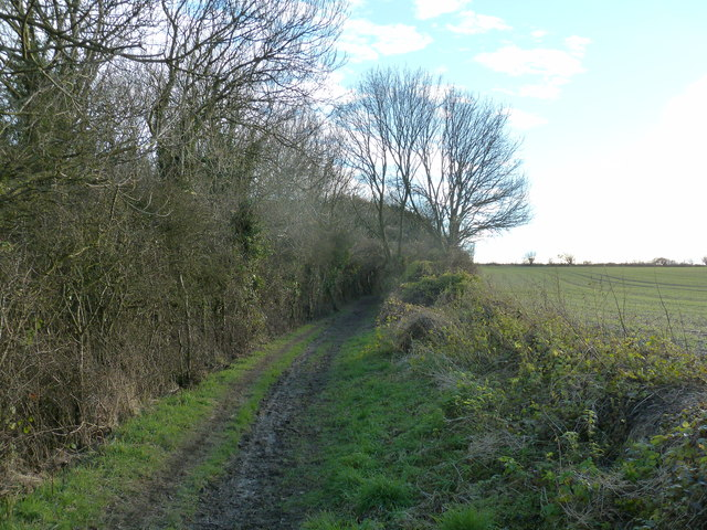 Bridleway 468 heading to Stoke Clump