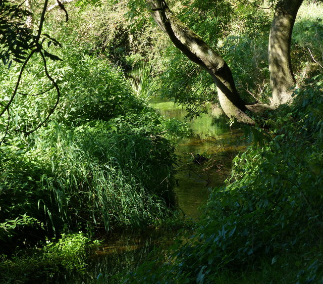 Small tributary of the River Biam