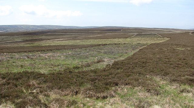 Moorland above Killpallet