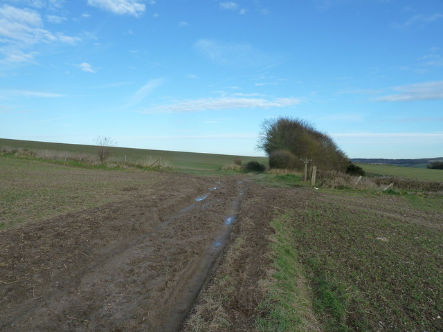 Crossroads of bridleways near Kingley Vale