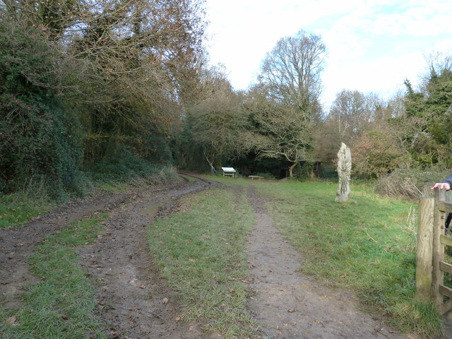 Southern entrance into Kingley Vale