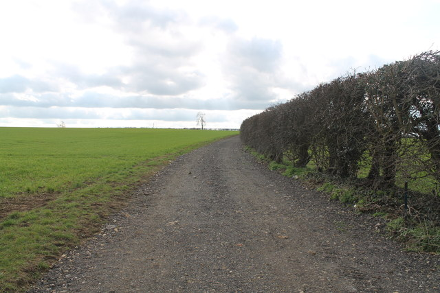 Farm Track off Hall Lane