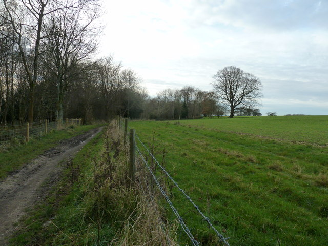 Farm land on the edge of Hounsom Firs