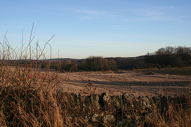 Stubble Field near Kingscavil