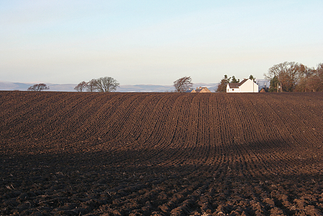 Ploughed Field near Kingscavil