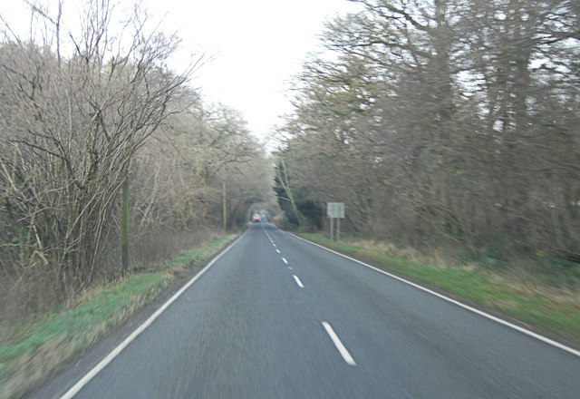 A32 beside New Copse