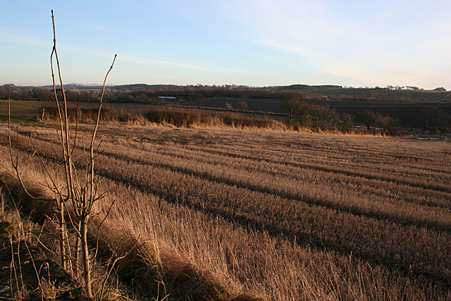 Fields near Champfleurie