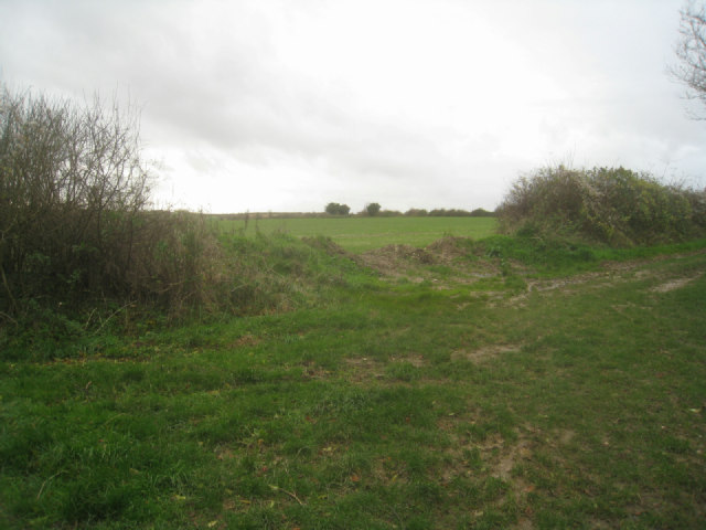 Farmland off Stokes Lane