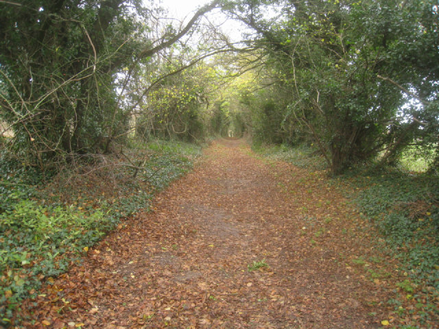 Byway around the chalk pit