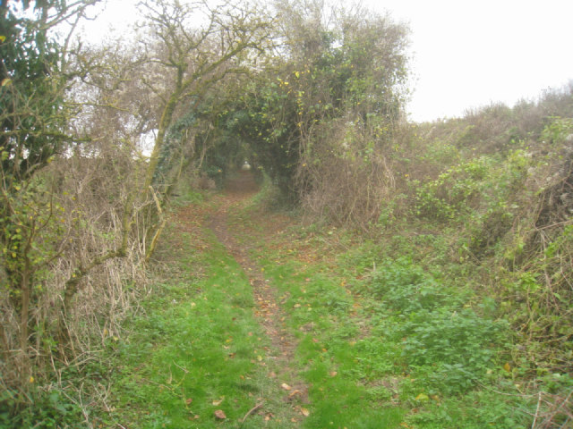 Footpath around the chalk pit