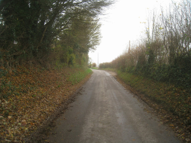Lane towards the A339