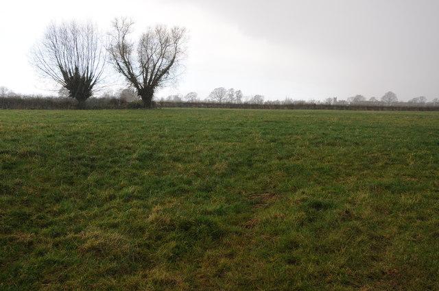 Farmland at Preston Wynne