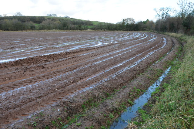 A very wet ploughed field near Marden