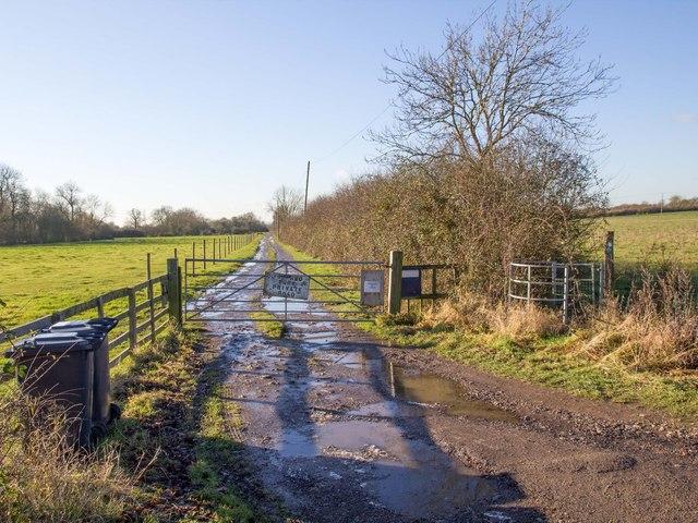 Driveway to Ireland Farm