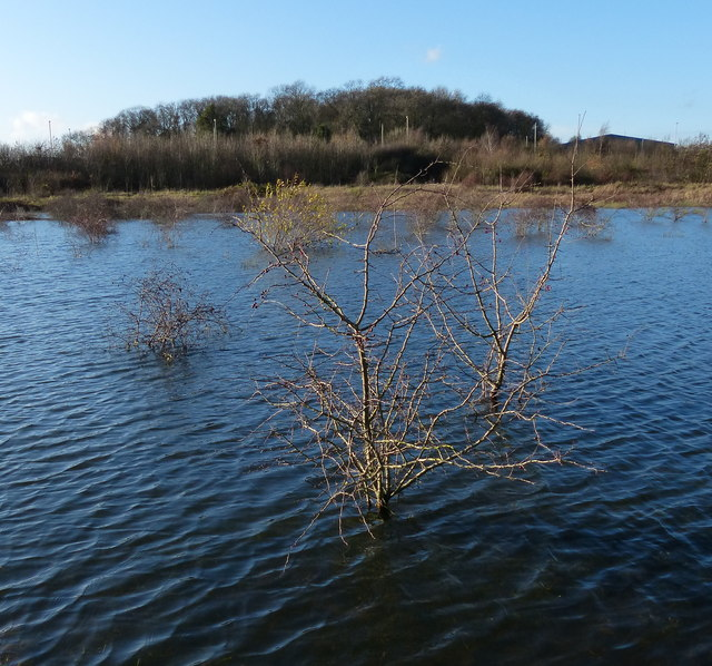Shallow lake alongside the A563 Lubbesthorpe Way