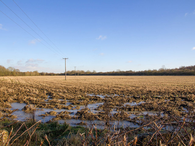 Fields near Boundary Farm