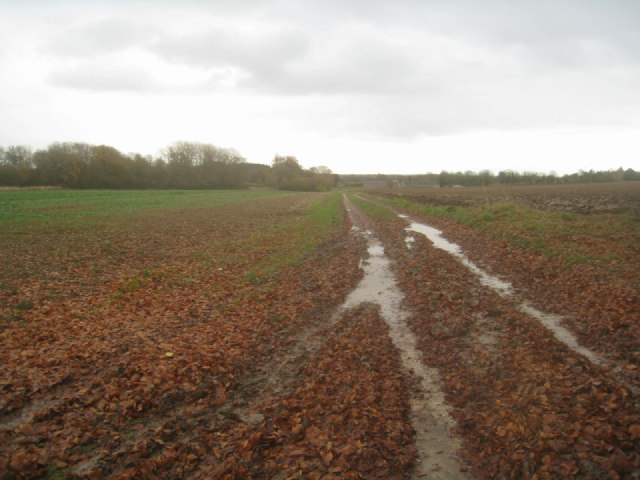 Track to Rookery Farm