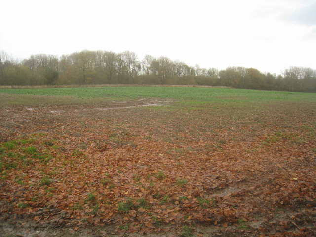 Farmland at Kiln Green