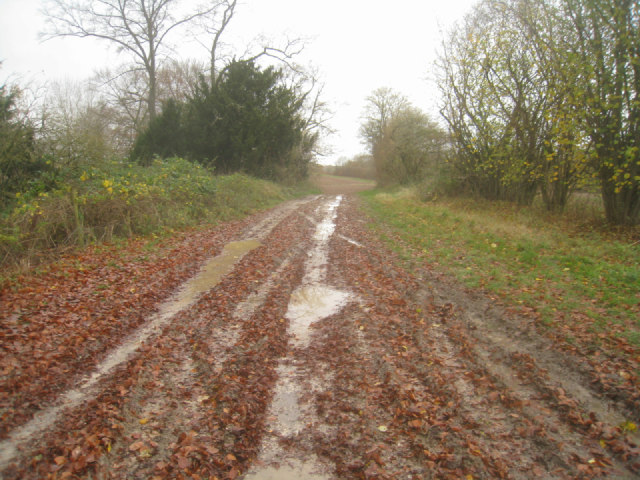 Track by former chalk pit