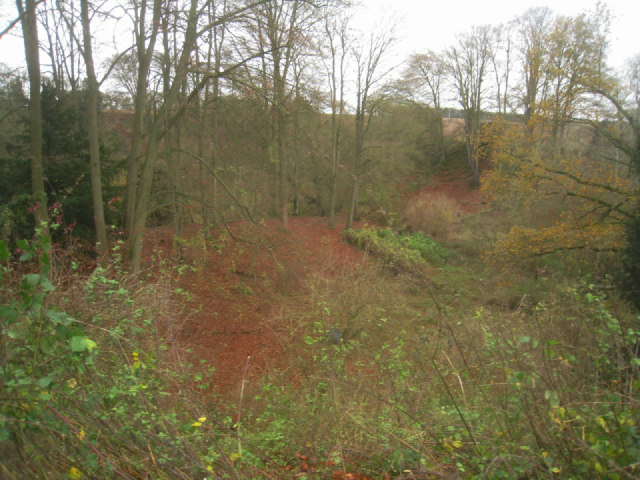 Looking into the chalk pit