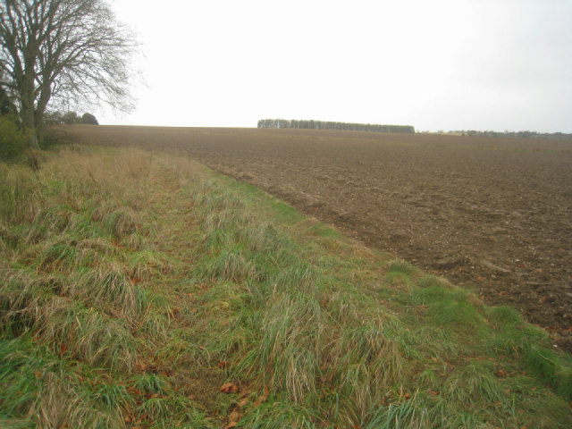 Farmland west of chalk pit