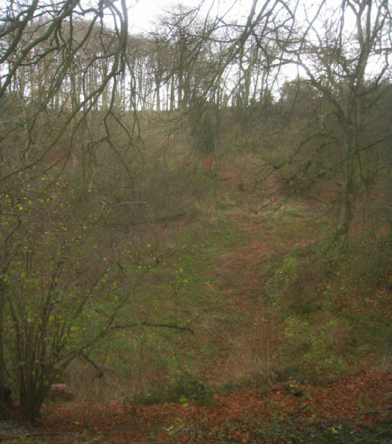 Looking into chalk pit
