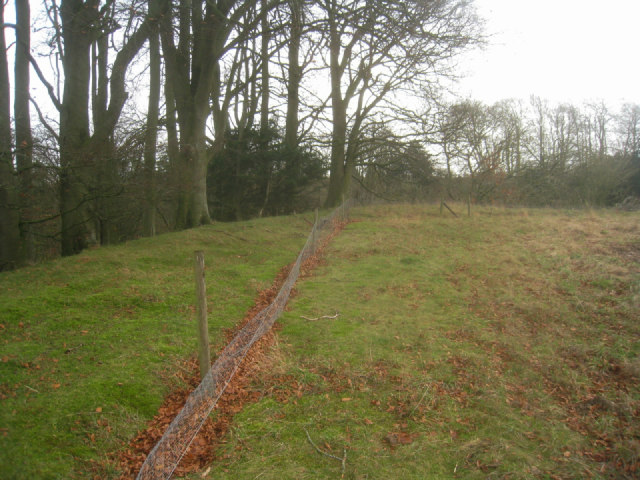 Rabbit fence around chalk pit