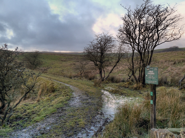 Path to The Moors