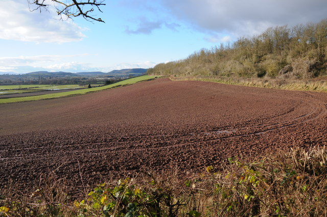 Ploughed field below Sutton Walls Fort