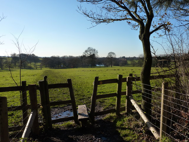 Stile in estate woodland