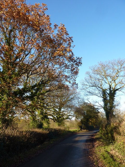 On Common Lane