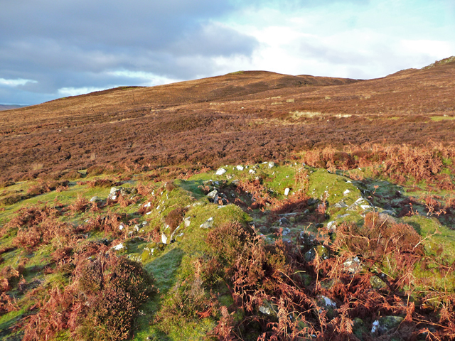 Ruins above Borve