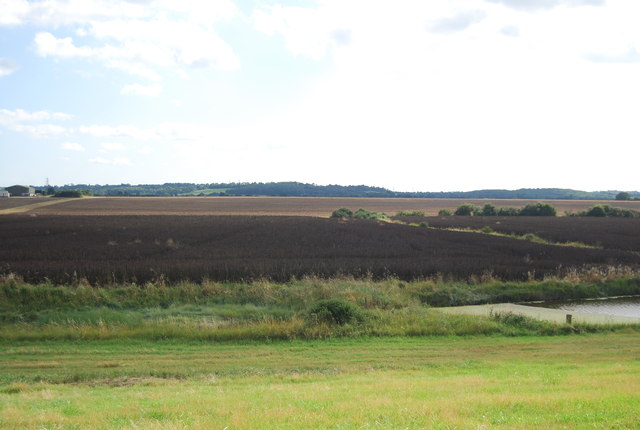 Farmland south of the River Crouch