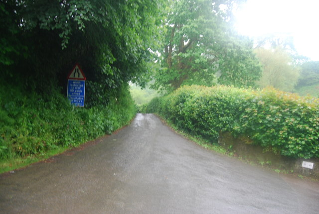 Narrow lane near Quarry Copse