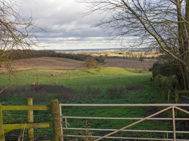 Fields near Ridgeway Farm