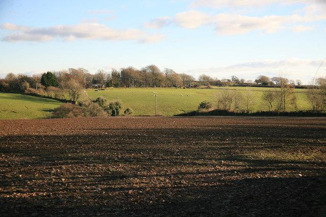 Fields nr Tremorkin
