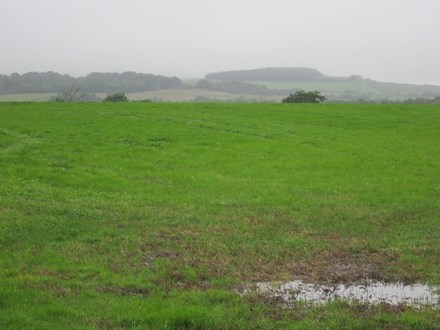 Field, Knockendale