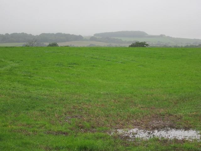 Field, Knockendale