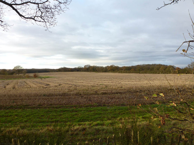 Burstead Farmland