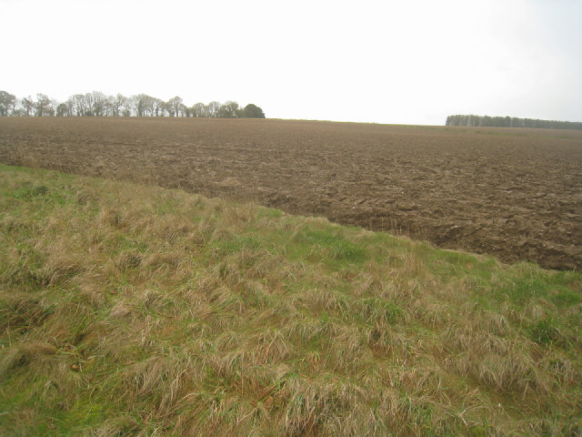 Ploughed field by chalk pit