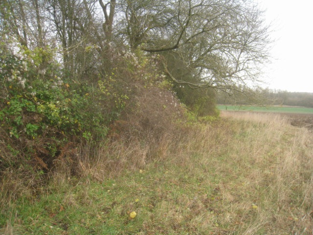 Eastern edge of chalk pit