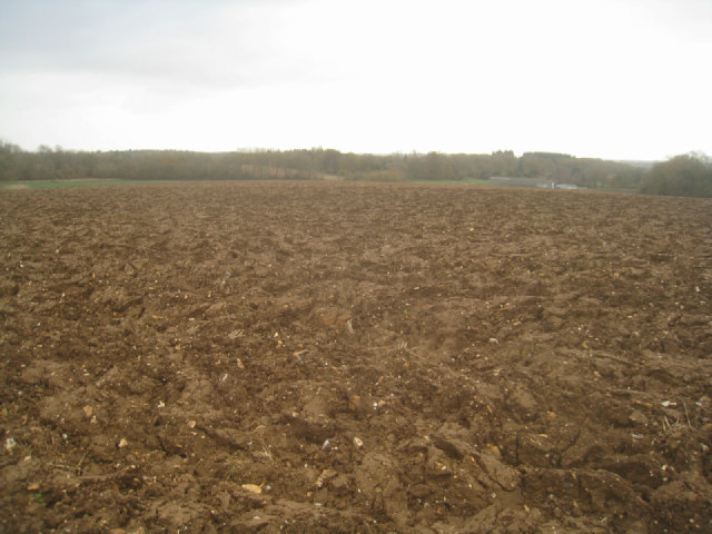 View towards Rookery Farm