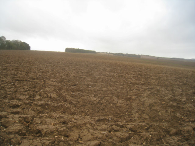 Slope of the Hampshire Downs