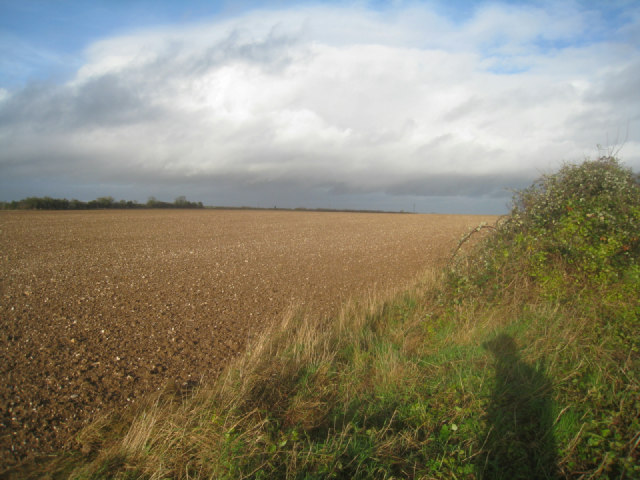 Farmland south of A339