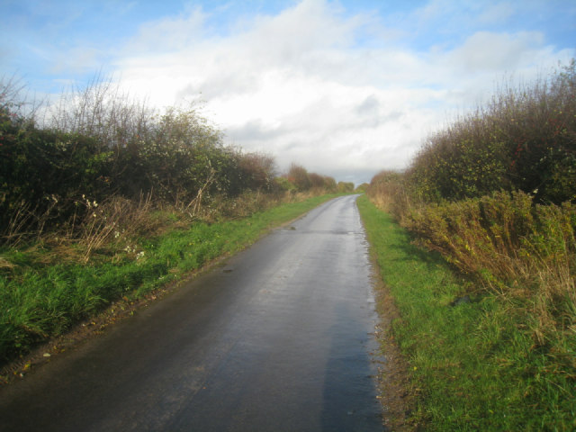 Sunlit lane towards A339