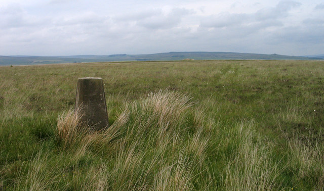 Trig point of Ealingham Rigg