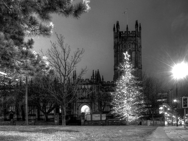 Cathedral and Christmas Tree
