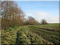 TL4154 : Path beside Bourn Brook by John Sutton